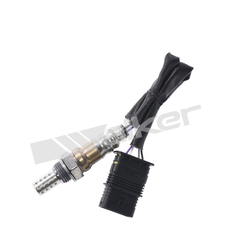 Lower Oxygen Sensor